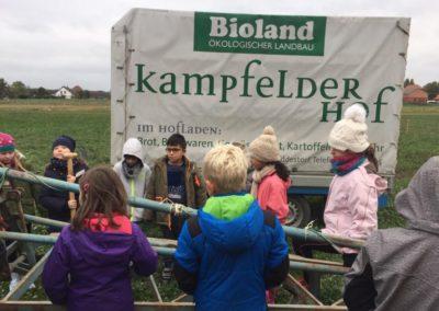 kampfeld2-768x576